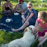 Spring potluck picnic