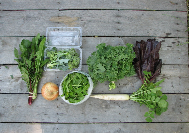 spring-share-csa-small