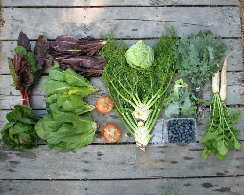 large-spring-csa-share